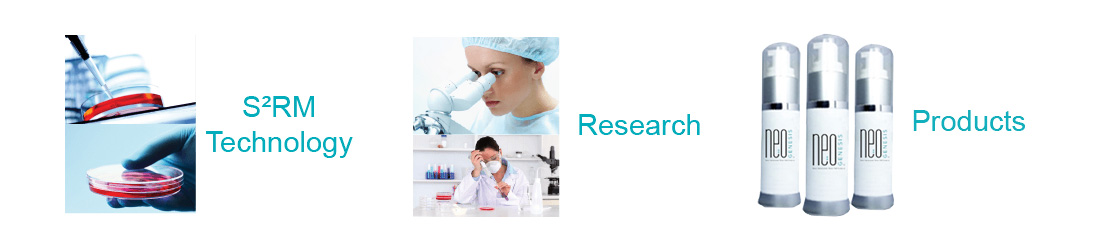 S2RM Technology - Research - Products